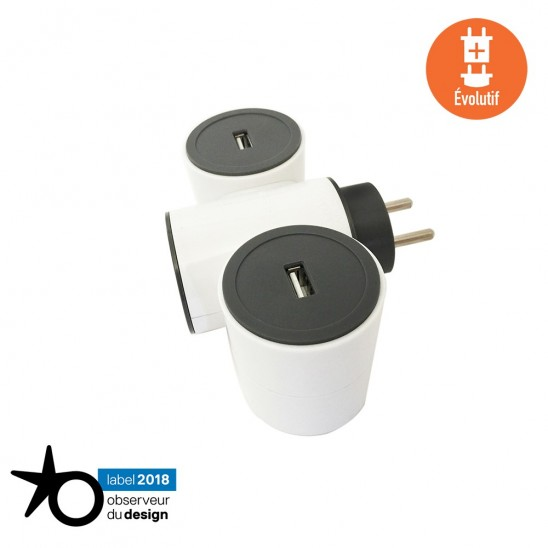 Triplite chargeur USB MODULOWATT